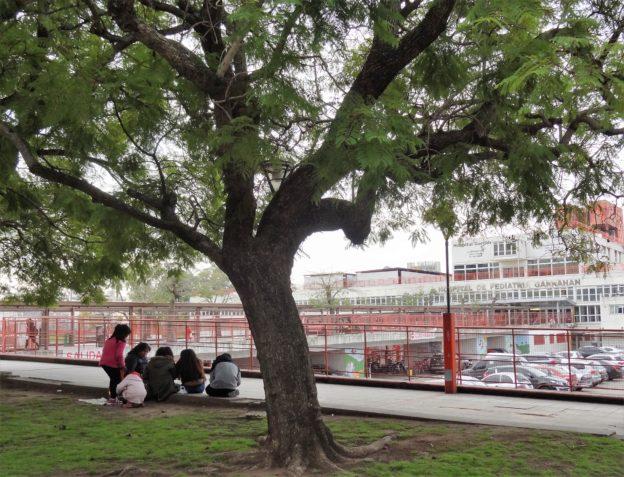 Hospital Pediatria Garrahan Espacios verdes