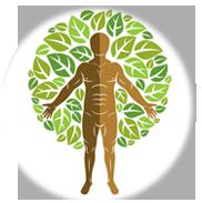 Plantas Medicinais e Fitoterapia para Distúrbios Metabólicos e Fisiológicos
