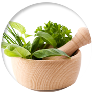 plantasmedicinais